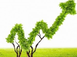 Opportunity for Moroccan green projects : Ecostart